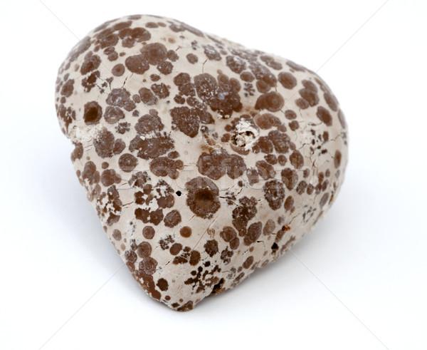 Odizolowany serca czekolady biały miłości Zdjęcia stock © eldadcarin