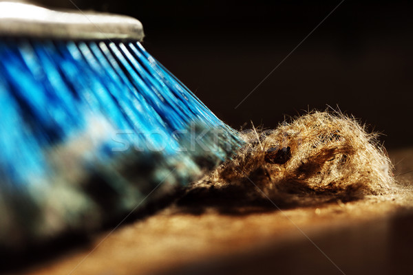 Window sunlight gives a romantic atmosphere to a blue broom surrounded by dust and a canine originat Stock photo © eldadcarin