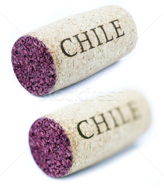 Isolato Chile orizzontale diagonale colorato Foto d'archivio © eldadcarin