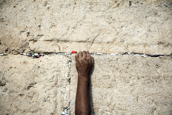 Muro mano adulto maschio Foto d'archivio © eldadcarin