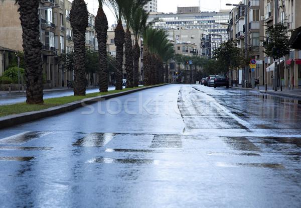 Pusty mokro zimą ulicy wcześnie rano Zdjęcia stock © eldadcarin