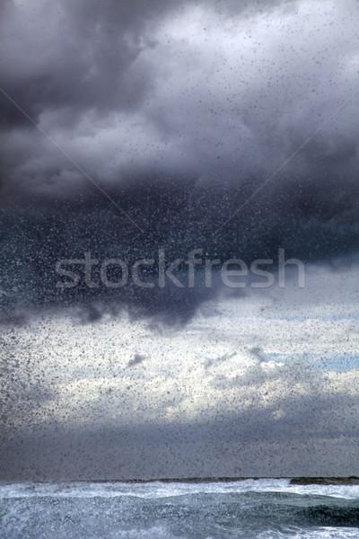 Stok fotoğraf: Sörf · kış · gökyüzü · karanlık · gri · fırtına · bulutları