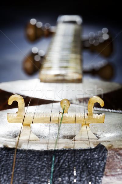 Persian Tar Detail Stock photo © eldadcarin