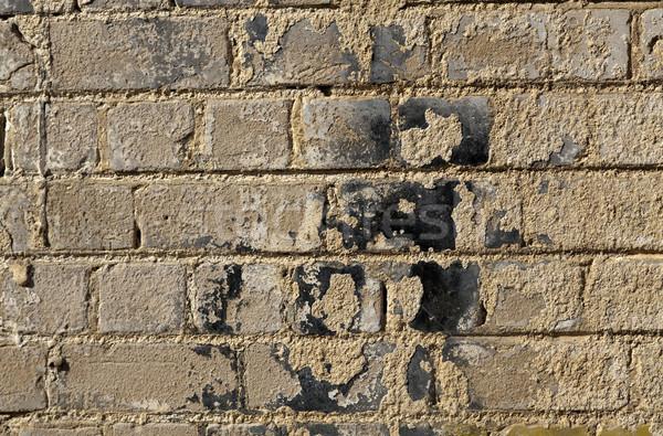Muro di mattoni coperto grezzo texture vecchio Foto d'archivio © eldadcarin