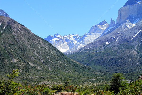Valley in Patagonia Stock photo © eldadcarin