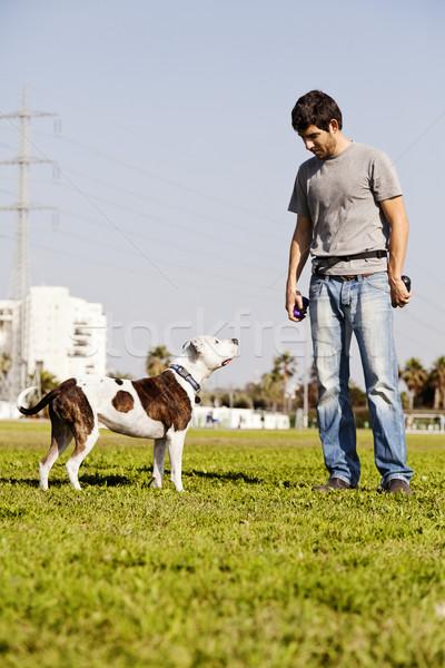 Foto stock: Pitbull · perro · propietario · goma
