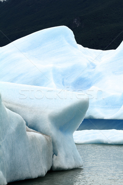 Melting Glacier Stock photo © eldadcarin