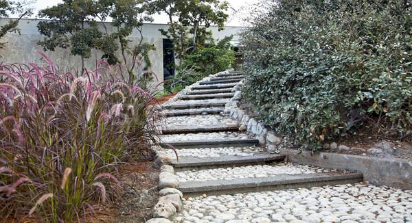 Pastoral Staircase in Urban Garden Stock photo © eldadcarin