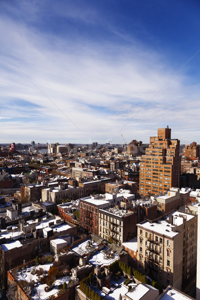 West Village Snow Covered Roof Tops Manhattan New-York Stock photo © eldadcarin
