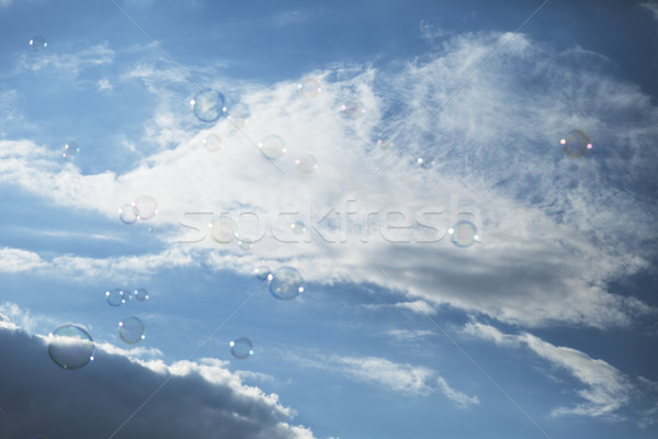 Soap sud bubbles floating in the air on the background of aftern Stock photo © eldadcarin