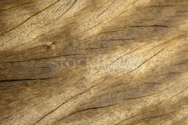 Wood Plank Background Stock photo © eldadcarin