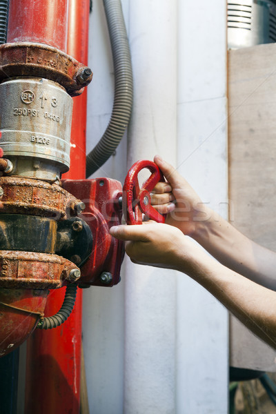 клапан рук взрослый человека действий ярко Сток-фото © eldadcarin