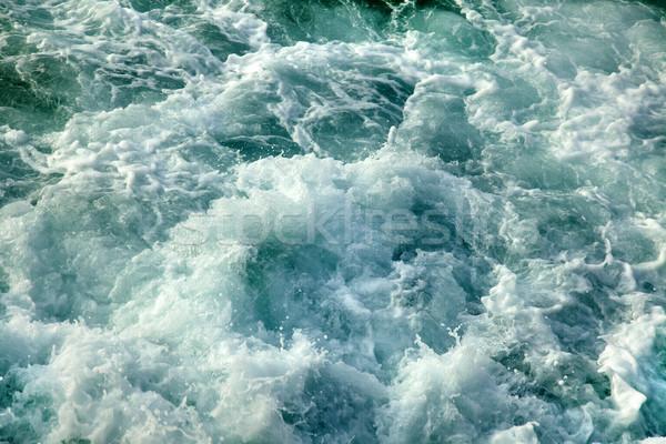 Gushing Sea Stock photo © eldadcarin