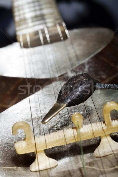 смола моста макроса музыкальный строку Сток-фото © eldadcarin