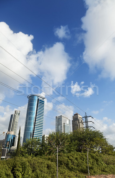 Centre-ville derrière Bush gratte-ciel vert Photo stock © eldadcarin