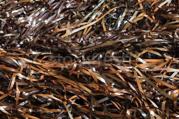 Magnetic Audio Tape Close-Up Background Stock photo © eldadcarin