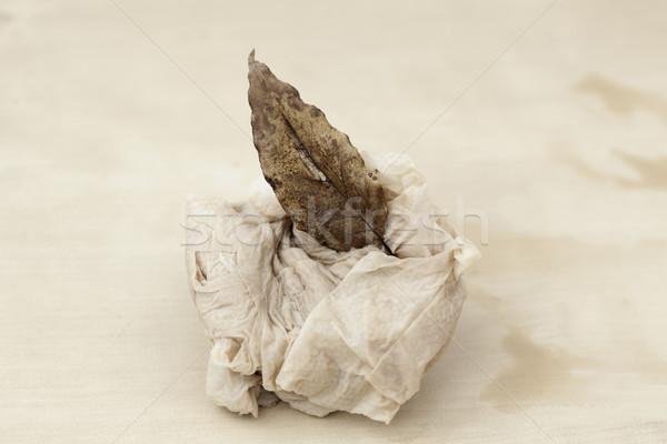 Toilet, Leaf, Zen Stock photo © eldadcarin