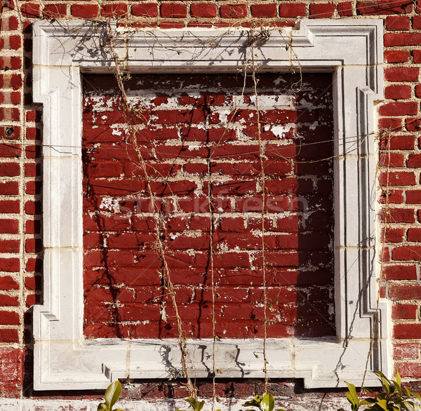 Empty Wooden Frame on Red Bricks Wall Stock photo © eldadcarin