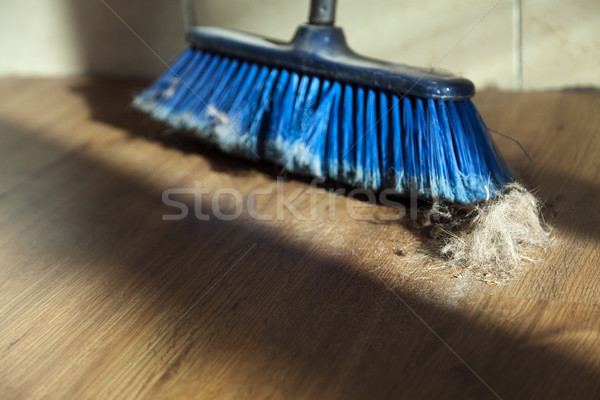 Broom, Dirt & Fur Ball on Parquet Floor Stock photo © eldadcarin