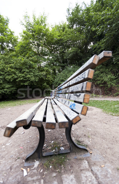 Bench at the Park Stock photo © eldadcarin