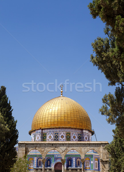Dome of the Rock Among Trees Stock photo © eldadcarin