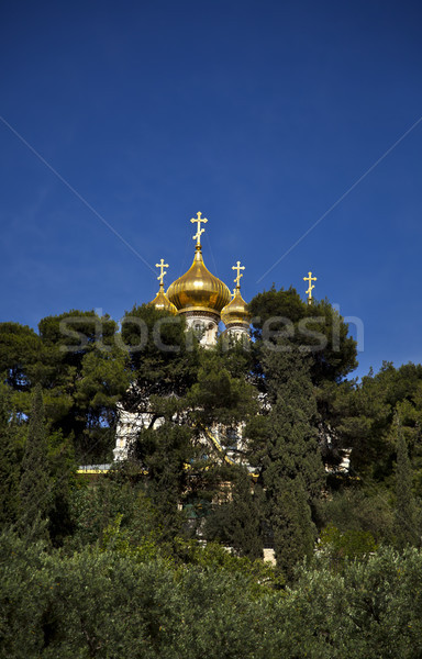 Church of Maria Magdalene Among Trees Stock photo © eldadcarin