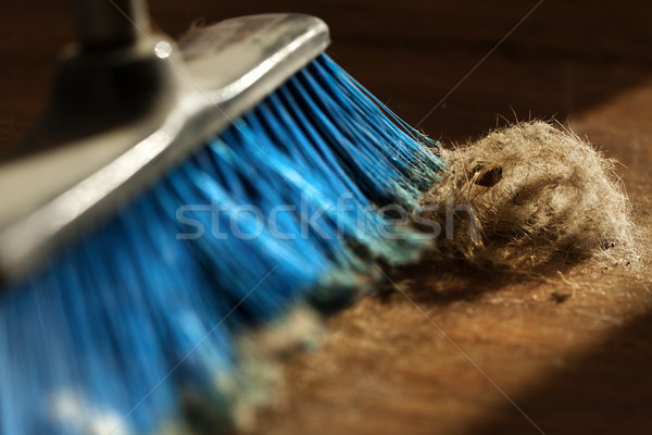 Broom, Dust & Fur Ball on Parquet Floor Stock photo © eldadcarin