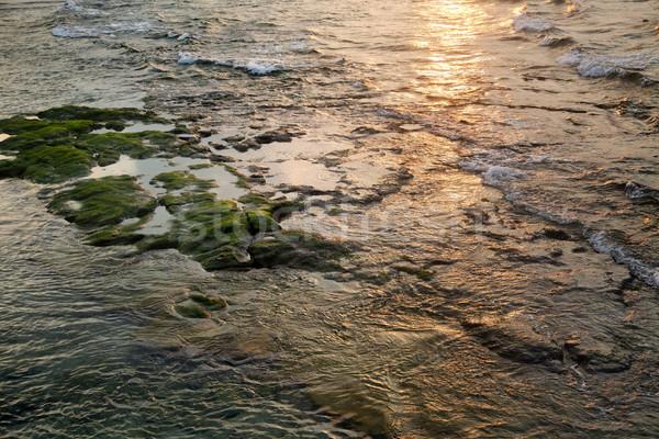Seicht Wasser Sonnenuntergang Hochwasser Meer Hintergrund Stock foto © eldadcarin