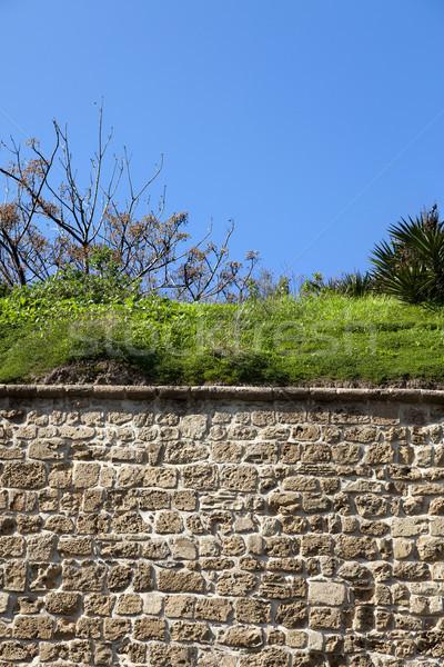 Roślinność mur starych miasta niebo tekstury Zdjęcia stock © eldadcarin