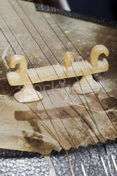 Tar dettaglio ponte macro primo piano musicale Foto d'archivio © eldadcarin