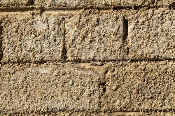 Egyenetlen téglafal közelkép fedett durva textúra Stock fotó © eldadcarin