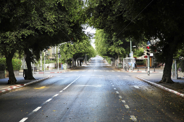 Empty Tel-Aviv Street Stock photo © eldadcarin
