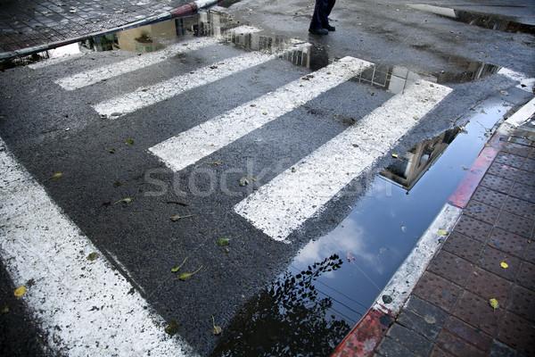 Stóp zimą przejście dla pieszych budynku zebra Zdjęcia stock © eldadcarin
