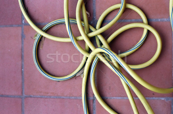 Garden Hose Stock photo © eldadcarin