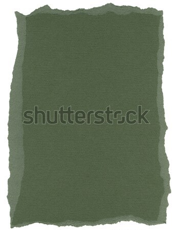 Yalıtılmış lif kağıt dokusu avcı yeşil doku Stok fotoğraf © eldadcarin