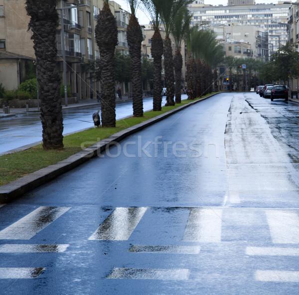 Empty Wet Winter Street Stock photo © eldadcarin