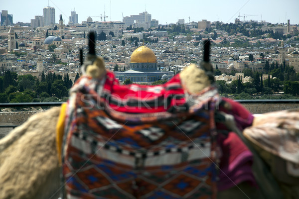 Camel Hump & Dome of the Rock Stock photo © eldadcarin