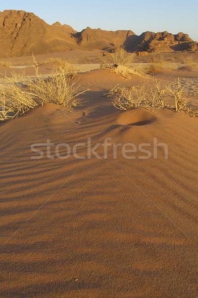 Mini duna desierto Jordania naturaleza montana Foto stock © eldadcarin