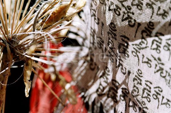 Lírio budista bandeira arte bandeira tempo Foto stock © eldadcarin