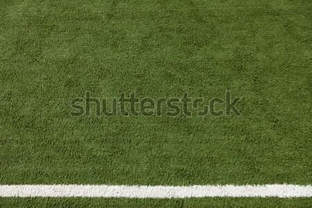 Kunstmatig gazon witte streep geschilderd sport Stockfoto © eldadcarin
