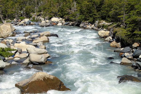 Gushing River Stock photo © eldadcarin