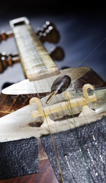 смола мнение музыкальный строку инструмент Сток-фото © eldadcarin
