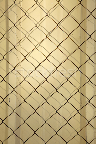 Metal Wall & Wire Mesh Stock photo © eldadcarin