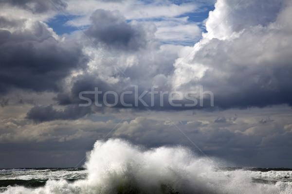 Storm Wave Stock photo © eldadcarin