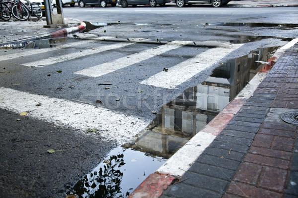 лужа улице поверхность Сток-фото © eldadcarin