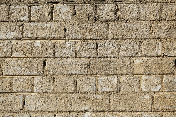Rugged Brick Wall Stock photo © eldadcarin