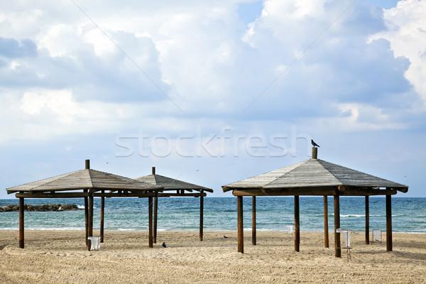 Plaży trzy zimą dzień dramatyczny niebo Zdjęcia stock © eldadcarin