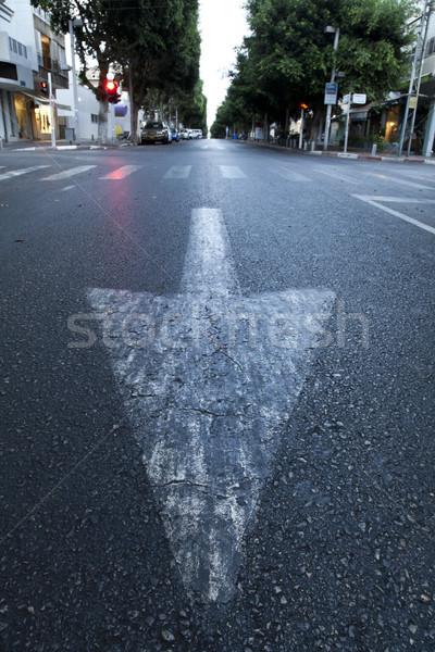 Street Arrow & Crosswalk Stock photo © eldadcarin