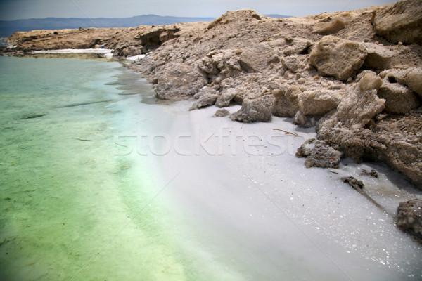 Tuzlu kıyı ölü İsrail plaj Stok fotoğraf © eldadcarin