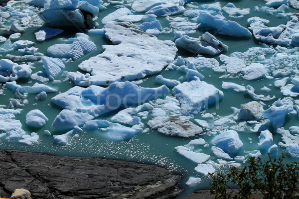 Glacier Fragments Floating on the Water Stock photo © eldadcarin